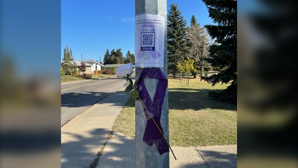 Cintas púrpuras, rosas blancas que se colocarán alrededor de Edmonton para honrar a las víctimas de los opioides