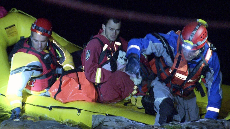 North Shore Rescue volunteers save a man and his dog after they fell into the Seymour River in this Oct. 2012 file photo. (CTV)