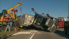 A truck carrying cattle rolled over Highway 401 on Saturday, Oct. 16, 2010.