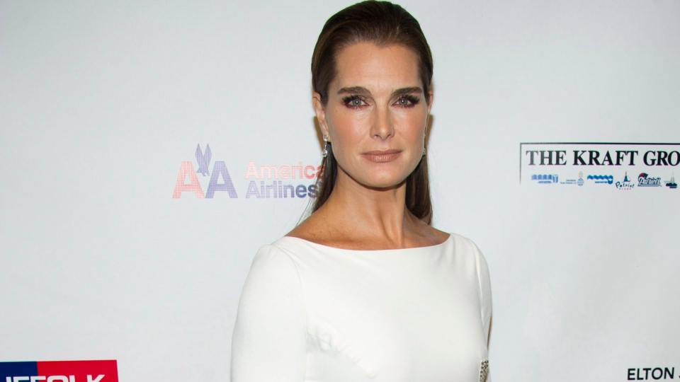 Brooke Shields attends Elton John's AIDS Foundation's 11th annual Enduring Vision benefit in New York on Monday, Oct. 15, 2012. (AP /Charles Sykes/Invision)