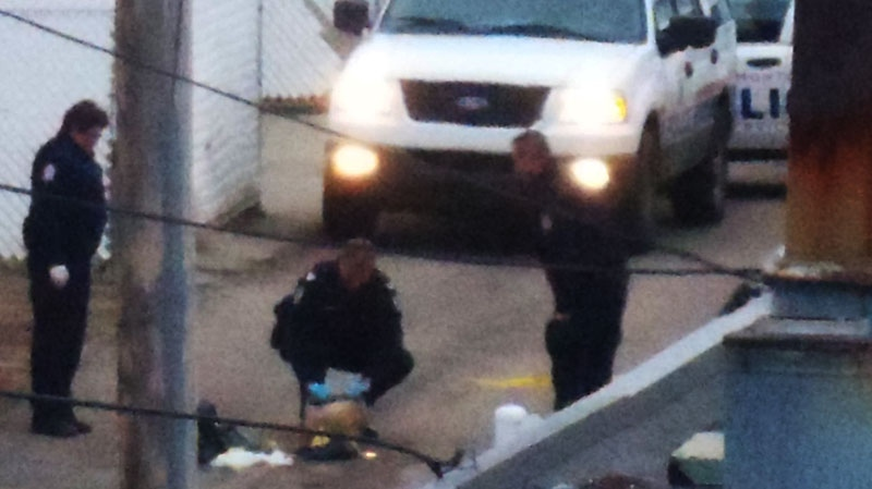 Edmonton police examine the head shortly after it was found, Wednesday, Oct. 24, 2012. (Jesse Whitnack for CTV News)