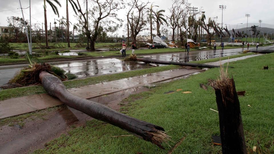 Fallen palm trees lie on a road after the hurricane Sandy in Santiago de Cuba, Cuba, Thursday Oct. 25, 2012. (AP / Franklin Reyes)