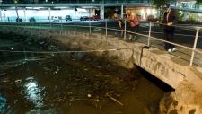Ala Wai Harbour in Hawaii hit by tsunami