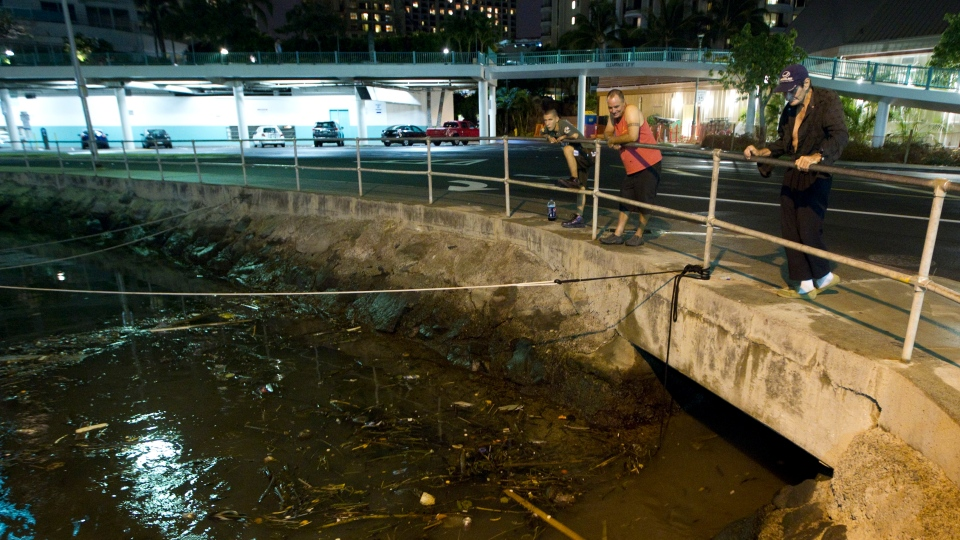 Visitors and Oahu residents watch the ocean water surge in and out of the Ala Wai Harbor carrying various debris during a tsunami in Honolulu, Saturday, Oct. 27, 2012. (AP / Eugene Tanner)