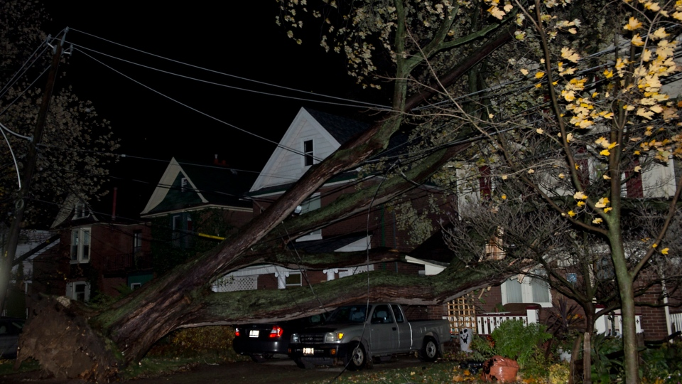 A fallen tree sits on vehicles and houses caused by superstorm Sandy in Toronto on Tuesday, Oct. 30, 2012. (Frank Gunn / THE CANADIAN PRESS)