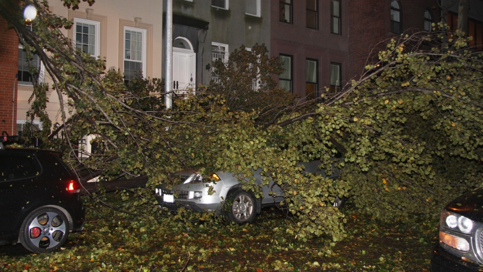 A fallen tree branch sits on a car blocking East 74th St. between Lexington Avenue and Third Avenue on Manhattan's Upper West Side, late Monday, Oct. 29, 2012. (AP / Willie Regan)