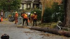 Hydro crews repair damage from storm