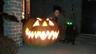 """""""Here's my pumpkin for this year,"""" says CTV viewer Jim Provost. (Viewer photo submitted by: Jim Provost)"""