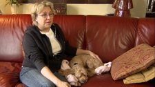 Patti Agnew and her cockapoo Molly were attacked by pit bulls outside a corner market on Saturday, Oct. 23, 2010. (CTV)