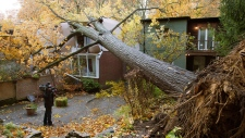 Toronto superstorm Sandy