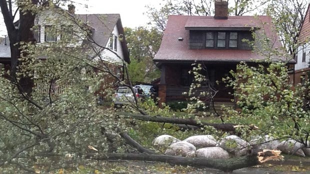 MyNews contributor Peg Kivi sent in this image of storm damage in Sarnia, Ont. on Tuesday, Oct. 30, 2012.