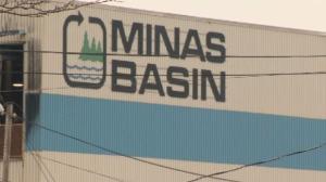 Minas Basin Pulp and Power mill