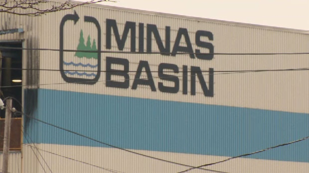 Minas Basin Pulp and Power Company Ltd. halted operations in December 2012, throwing 135 workers out of their jobs and delivering a major setback to the Annapolis Valley economy.