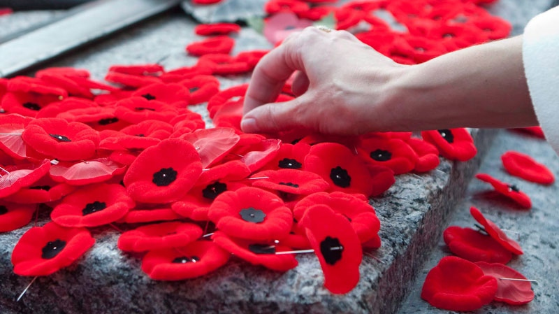 The Poppy Powerful Symbol Of Remembrance Ctv News