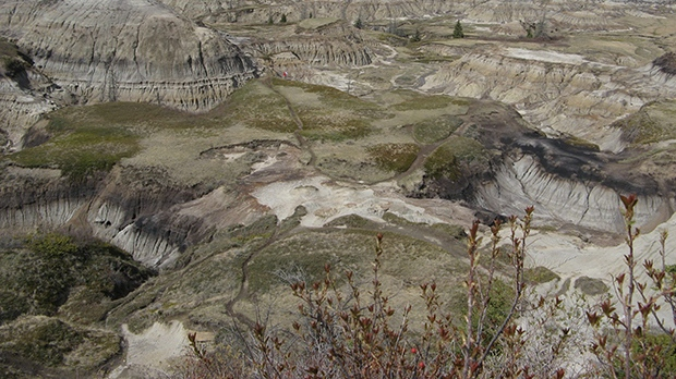 Horseshoe Canyon in the Alberta Badlands