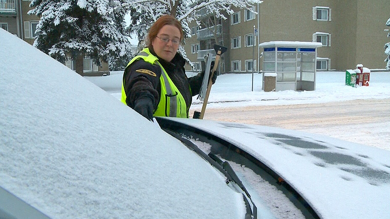 Starting after 7 a.m. Friday, traffic enforcement officers began handing out $50 parking tickets to drivers who remained parked on bus routes despite a seasonal parking ban.