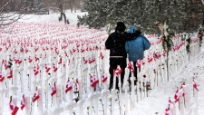 Remembrance Day controversies