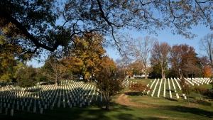 Early morning sun lights headstones at Arlington National Cemetery, in Arlington, Va., as the country commemorates Veterans Day, Sunday, Nov. 11, 2012.  (AP Photo/Manuel Balce Ceneta)