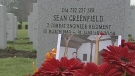 CTV Ottawa: Remembrance Day in the capital