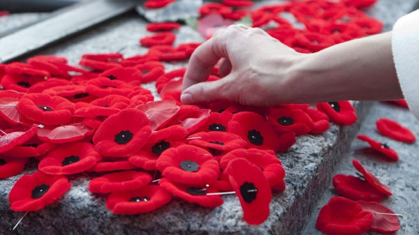 A hand reaches out to place a poppy on the Tomb of the Unknown Soldier following Remembrance Day ceremonies in Ottawa, Wednesday November 11, 2009. (Adrian Wyld / THE CANADIAN PRESS)
