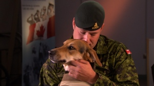 Geoff Logue hugs Luna the psychiatric service dog