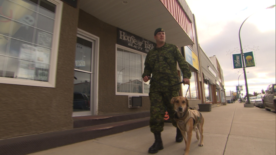 Cpl. Geoff Logue walks with Luna, a two-year-old German Shepard-Lab and psychiatric service dog, in Killarney, Man.