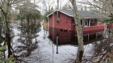 A cottage along the Clyde River in N.S. is partly submerged as flood waters continue to surge after several days of heavy rain hit the province on Tuesday, Nov. 9, 2010. (Mike Dembeck / THE CANADIAN PRESS)
