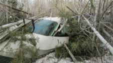 Plane crash near Snow Lake