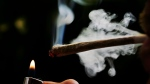 In this June 24, 2008 file photo a regular user of soft drugs demonstrates how to smoke a marijuana joint in a coffee shop in Amsterdam, Netherlands. (AP Photo/Peter Dejong, File)