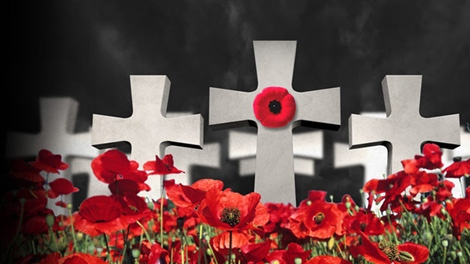 Veterans urged to mark Remembrance Day virtually this year