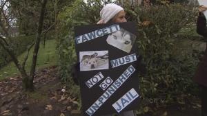 CTV BC: Sentencing hearing for sled dog cull