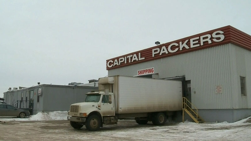 Meat-processing plant Capital Packers has had its licence suspended by the CFIA over concerns of food safety.