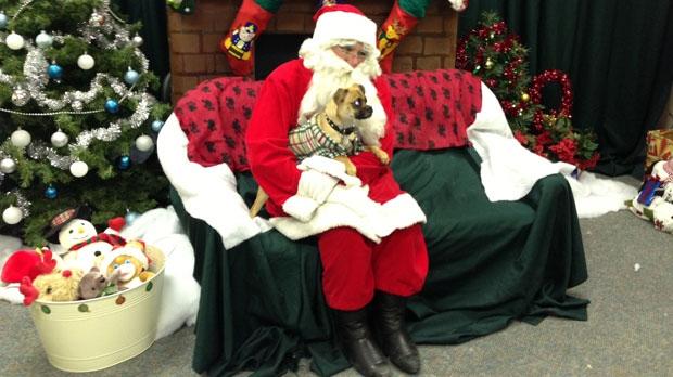 Santa Claus with dog in Winnipeg