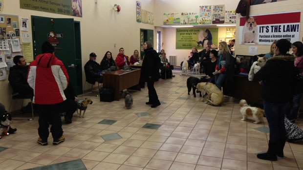 Winnipeggers wait to have their pets photos taken with Santa to raise money from Animal Services, Saturday.
