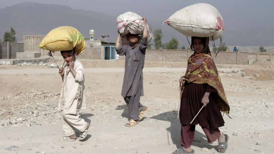 Afghan refugee children pose for a photograph as they put wood fuel over the head on the outskirts of Jalalabad, east of Kabul, Afghanistan, Friday, Nov. 16, 2012. (AP / Rahmat Gul)