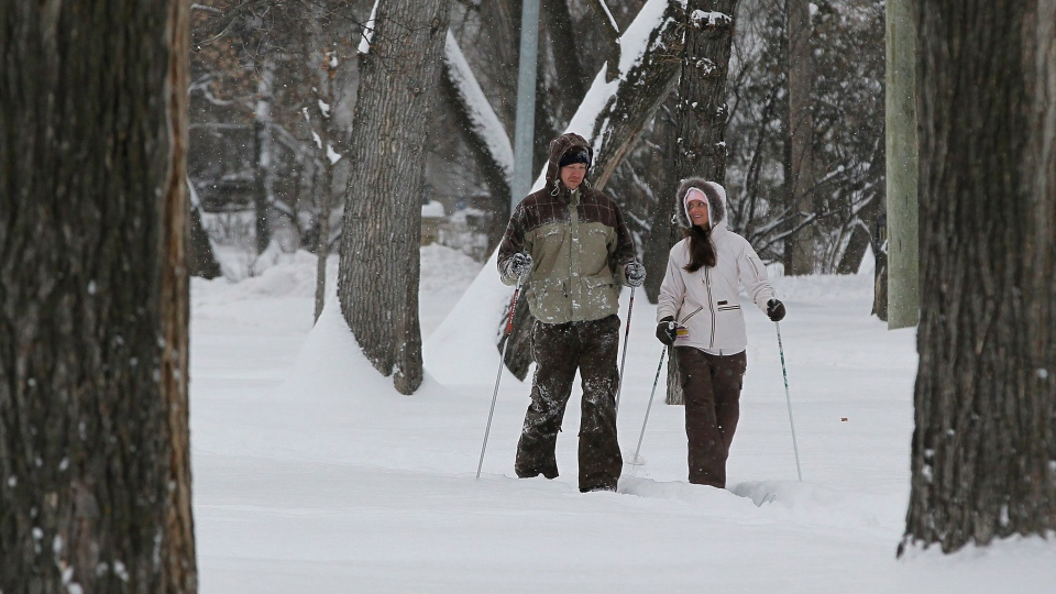 Nathan Ashmead and Allison Bingham ski down Wellington Cresent in Winnipeg on Sunday, November 11, 2012. (John Woods / Winnipeg Free Press / THE CANADIAN PRESS)