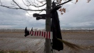 A Halloween decoration of a witch blown into a tree sits beside Lake Ontario as waves driven by superstorm Sandy crash on a beach in Toronto on Tuesday morning, Oct. 30, 2012. (Frank Gunn / THE CANADIAN PRESS)