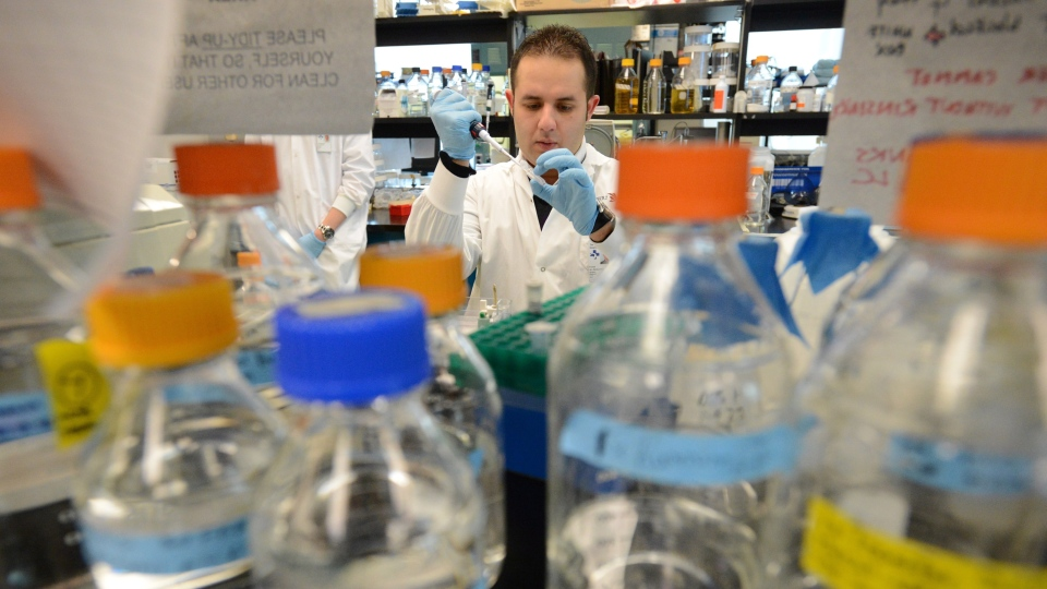 Immunology and Microbiology PHD student Feras Al-Ghazawi works in an HIV/AIDS lab at the Ottawa Hospital Research Institute in Ottawa Tuesday Nov. 27, 2012. (Sean Kilpatrick / THE CANADIAN PRESS)