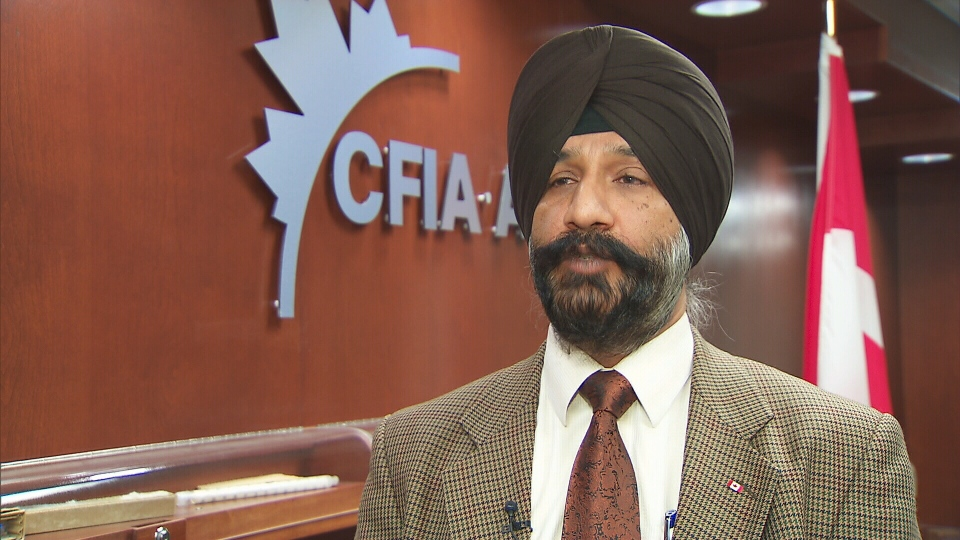 Dr. Harpreet Kochhar, CFIA's executive director of western operations, speaks with CTV News, Wednesday, Nov. 28, 2012.