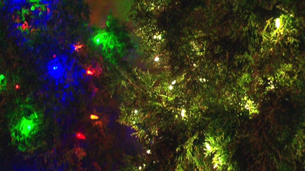 Christmas Tree Recycling Depot Locations