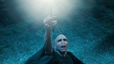 Ralph Fiennes as Lord Voldemort in Warner Bros. Pictures' 'Harry Potter and the Deathly Hallows - Part 1'