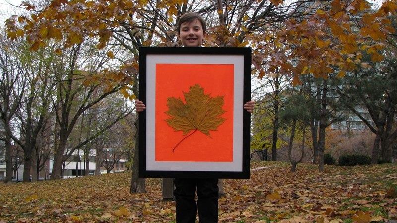 Nine-year-old Joseph Donato, of Pickering, Ont., shows off the giant maple leaf in a Toronto park on Thursday, Oct. 18, 2010 that he picked up on his way home from a park last month. Without the stem, the leaf measures more than 34 by 29 centimetres, bigger than some serving platters. (Graeme Roy / THE CANADIAN PRESS)
