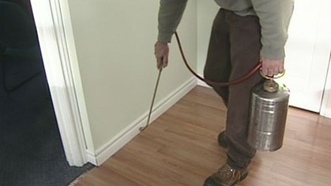 A pest control worker sprays a home with pesticide to try to eliminate bed bugs.