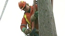 A Brantford Power worker repairs a hydro pole after copper wire thefts in Brantford, Ont. on Friday, Nov. 19, 2010.
