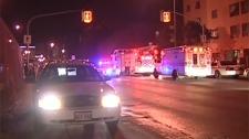 Winnipeg homicide rate