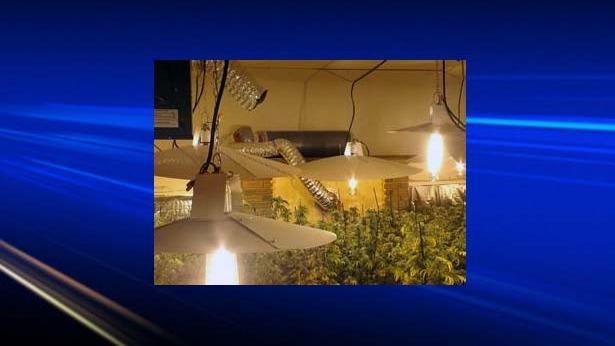 Images from the Balzac marihuana grow operation.