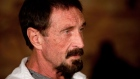 ctv.ca: Software guru John McAfee feeling better, hopes to... at CTV: image