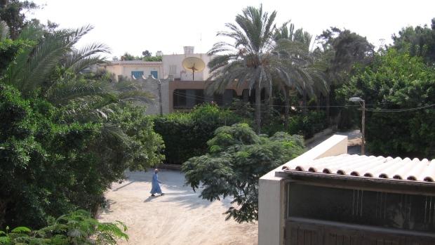 Agamy Egypt