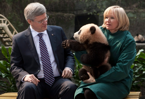 Stephen Harper and his wife Laureen hold a panda