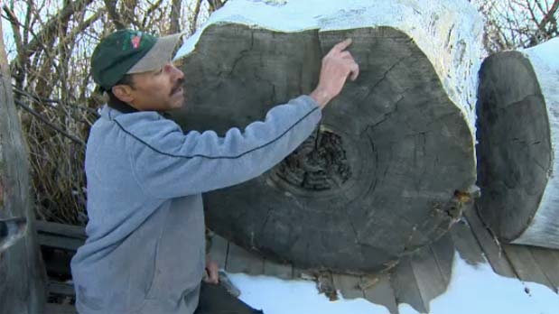 Kevin Nicholson , the Wood King, has piles of old wood in his southern Alberta yard.